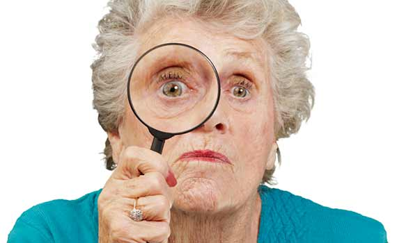 Magnifying Glass Mature 10582691 M